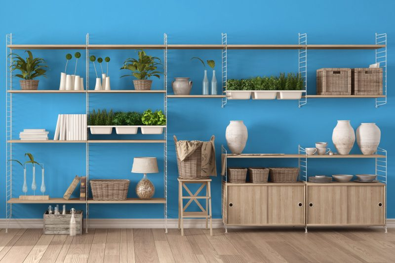 professionally organized minimal shelves that are clean and arranged neatly with potted plants and wicker baskets